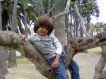 Milo up a tree on his 4th birthday